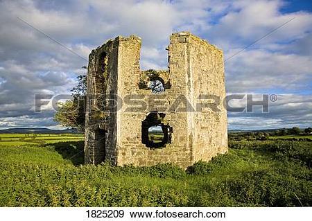 Stock Photograph of Ruins of hexagonal folly, Danesfort, County.