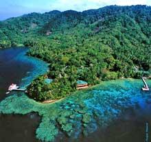 Diving Kimbe Bay, Walindi, Scuba Dive Walindi Plantation Resort.