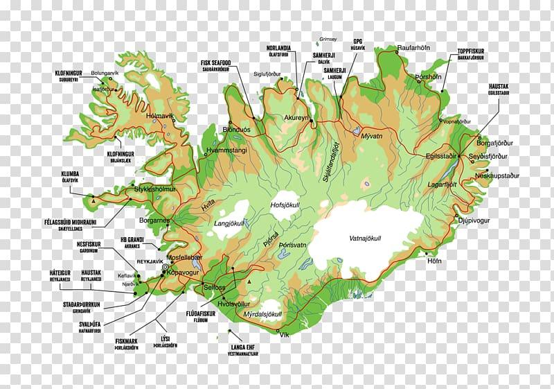 Þorlákshöfn Grindavík Vestmannaeyjar Flúðir Atlantic cod.