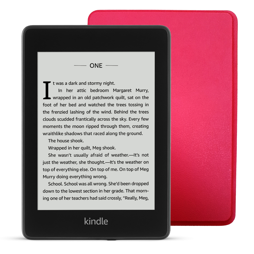 New Kindle Paperwhite 2019+Case.
