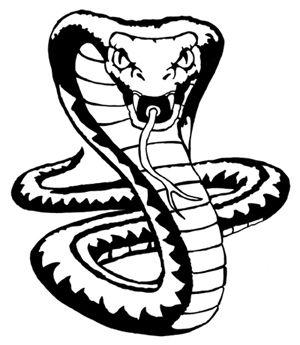 King Cobra Snake Drawings.