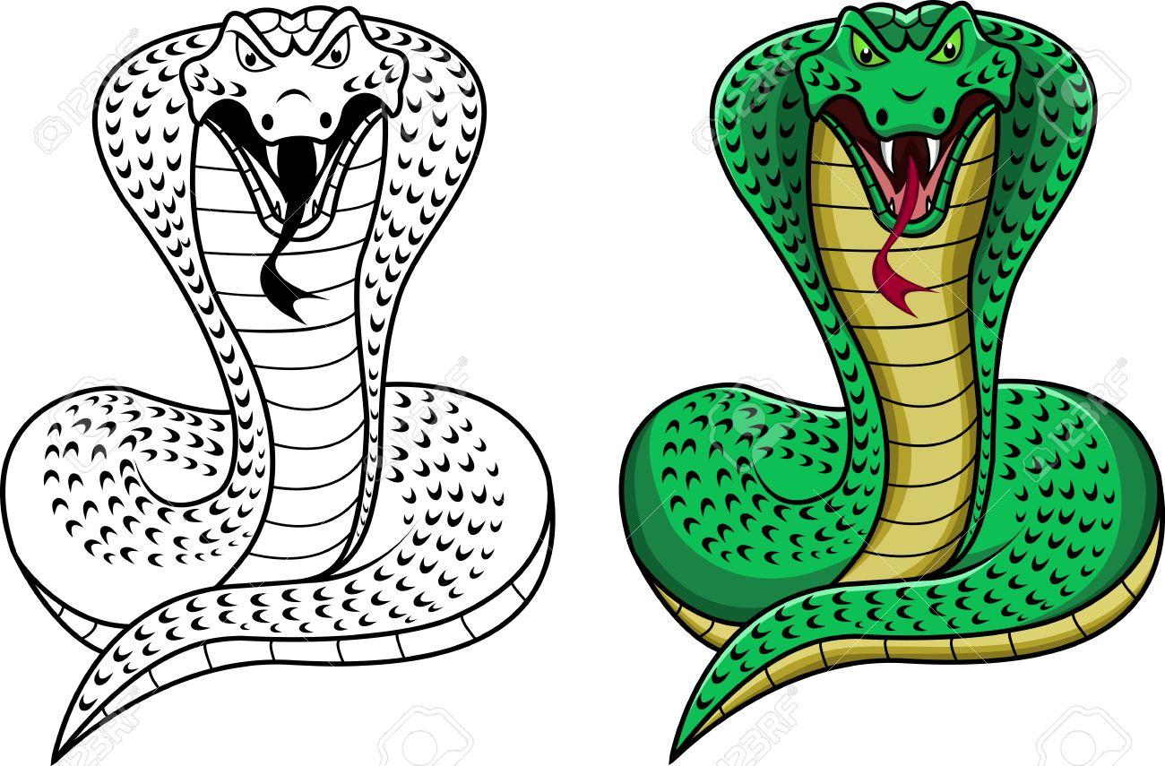 king cobra.