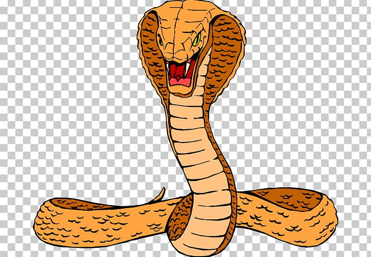 Snake King Cobra Free Content PNG, Clipart, Animal Figure, Big Cats.