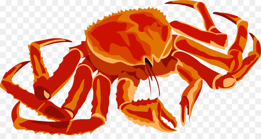 Seafood Background clipart.