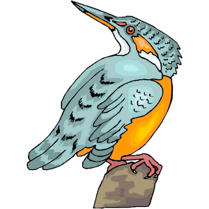 Kingfisher 06 clipart, cliparts of Kingfisher 06 free download.