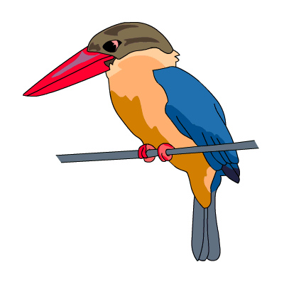 Kingfisher clipart #10