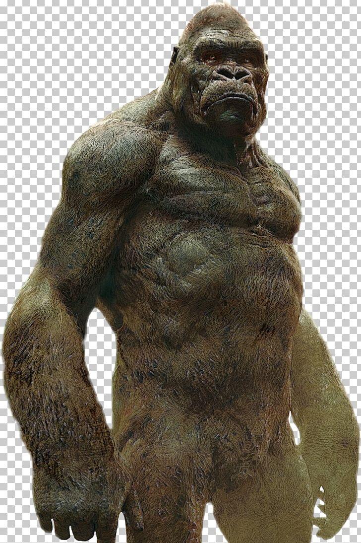 Western Gorilla King Kong Godzilla YouTube Ape PNG, Clipart, Ape.
