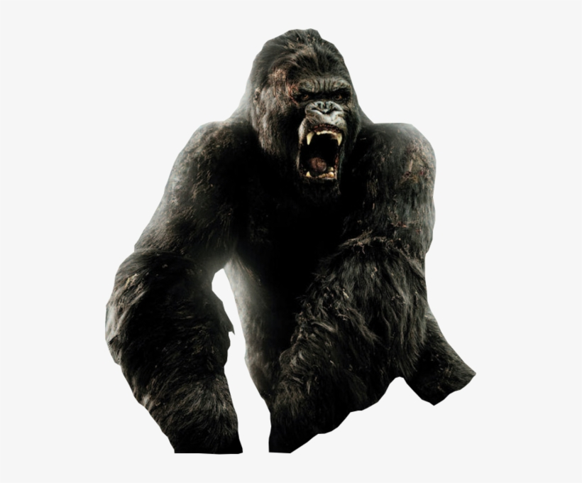 King Kong Psd.