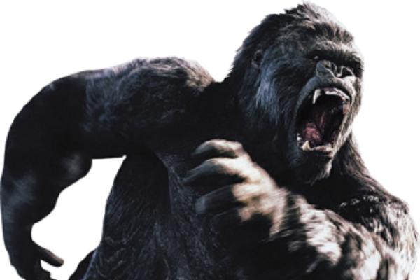 King kong gorilla png #37889.