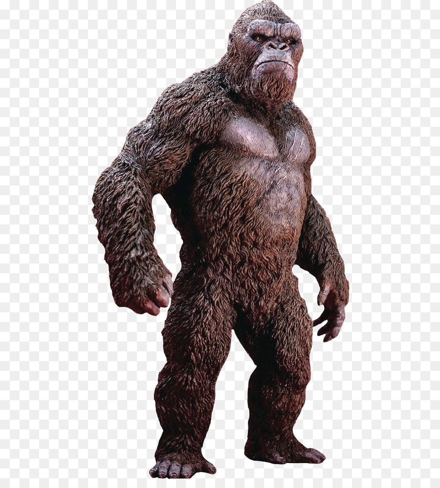 Gorilla Cartoon png download.