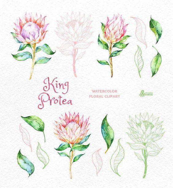 Wasserfarben, König and Blumen on Pinterest.