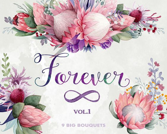Flower bouquets clipart, Forever, King Protea, Gumtree blossoms.