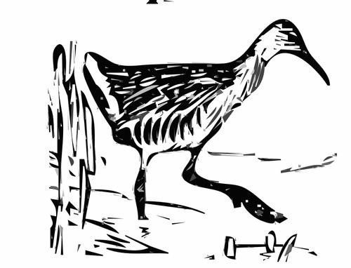 King rail in the marshland vector clip art.