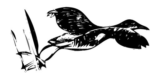 King rail bird taking off line art vector image.