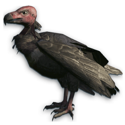 King Vulture Clipart transparent PNG.