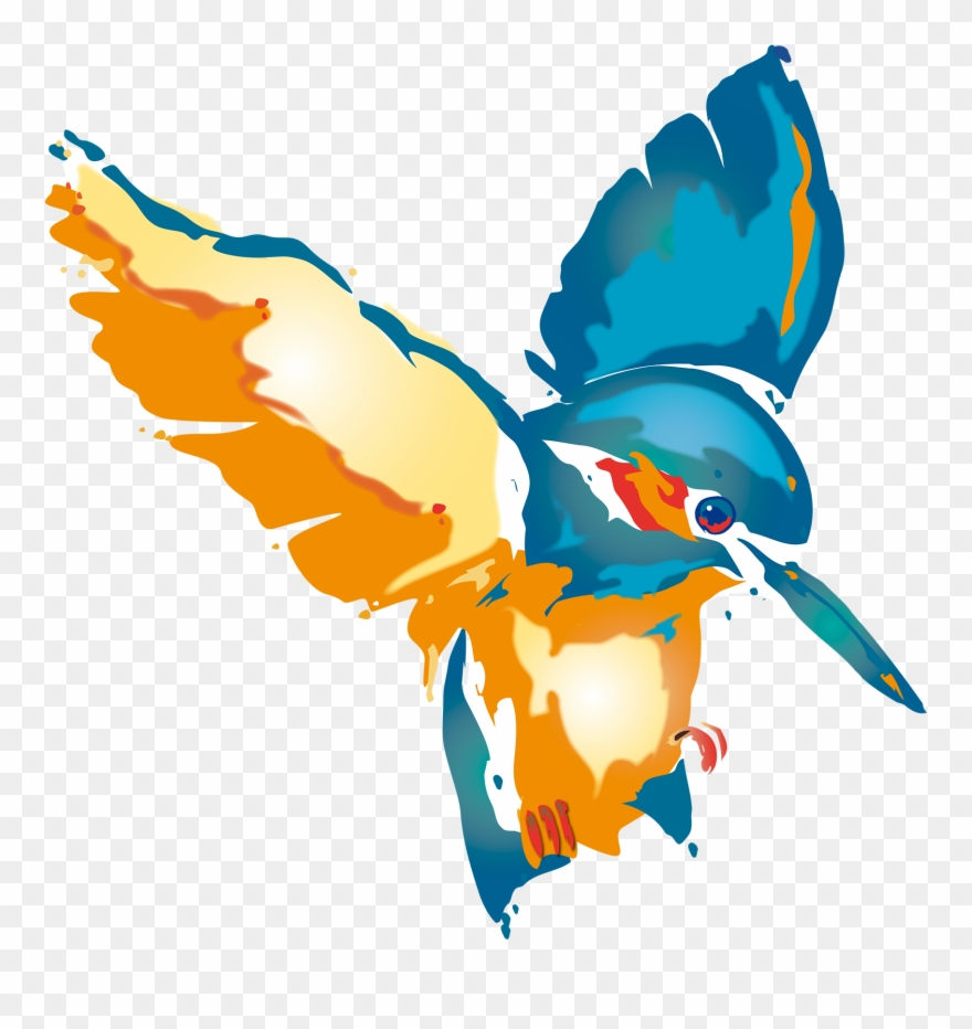 Kingfisher Clipart King Fisher.