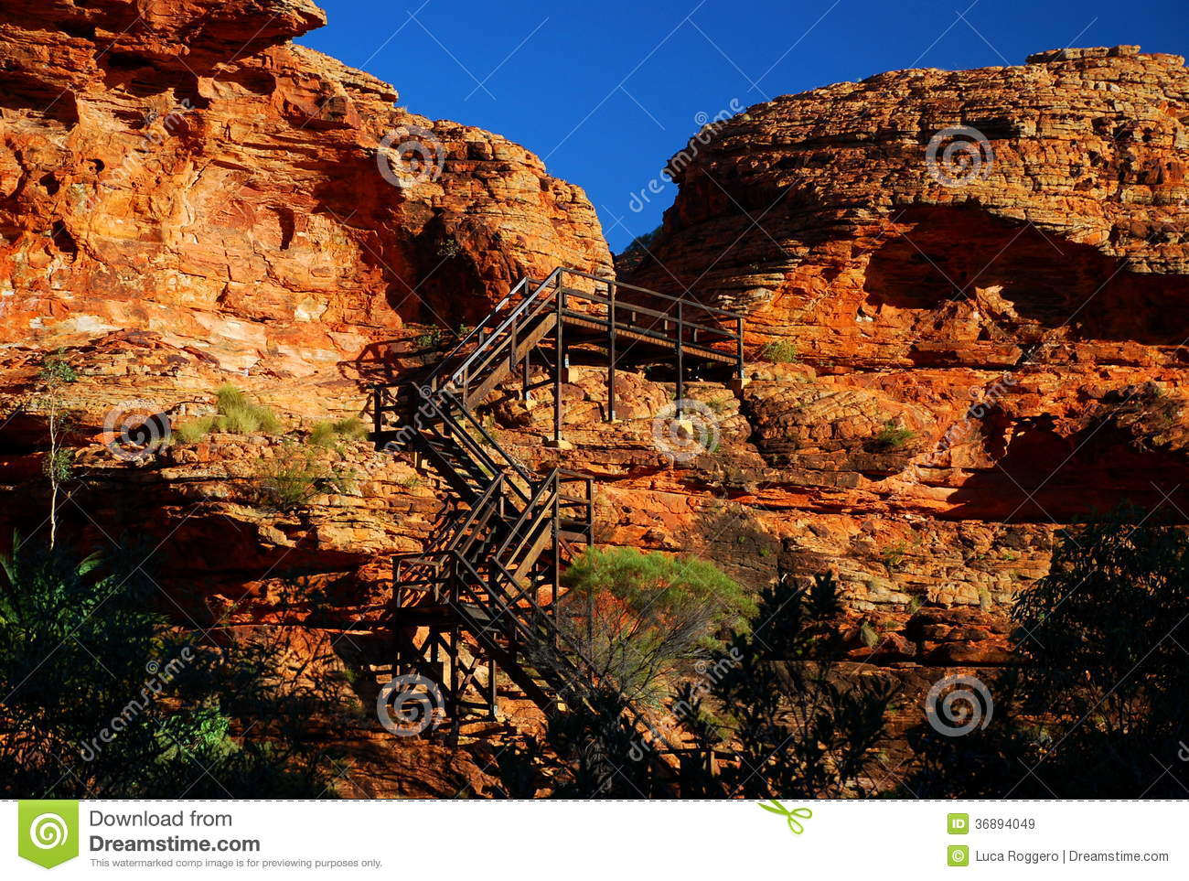 Kings Canyon Dome. Watarrka National Park, Northern Territory.