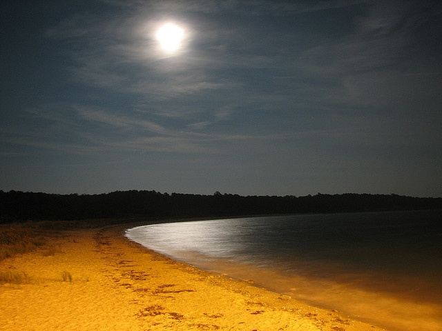 1000+ images about Virginia State Parks on Pinterest.