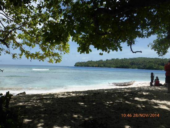 Island Life.