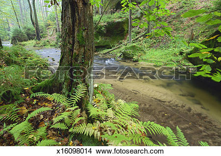 Stock Photo of Kirnitsch valley and stream, spring x16098014.