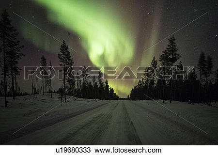 Stock Photo of Northern lights over pine forest near Kiruna.