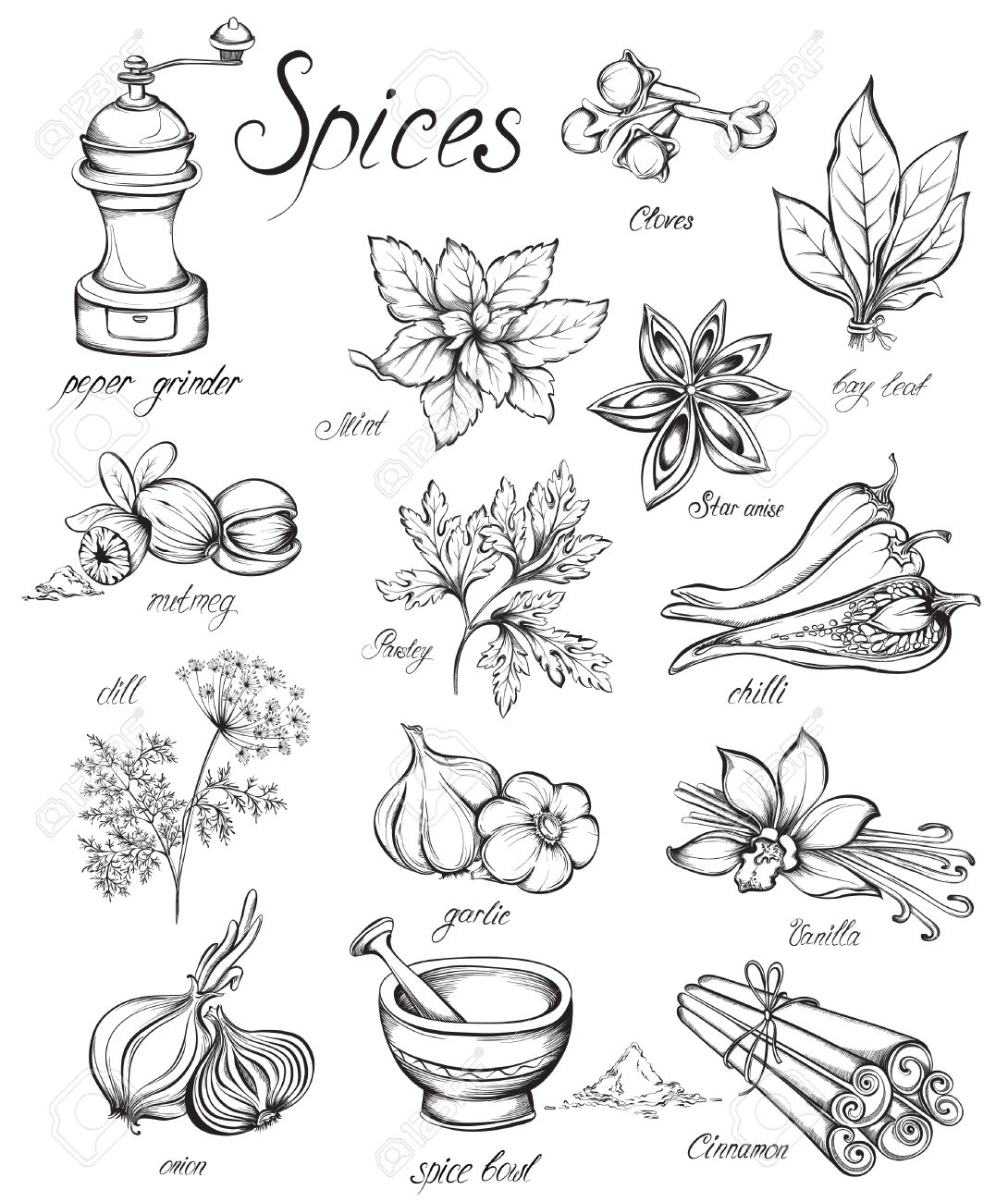 Black and white clipart kitchen supplies spices.