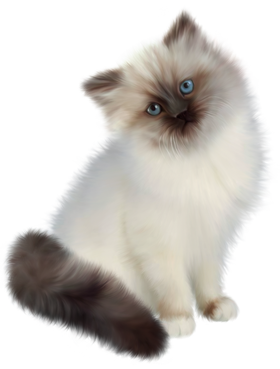 Kitten Transparent PNG Clipart.