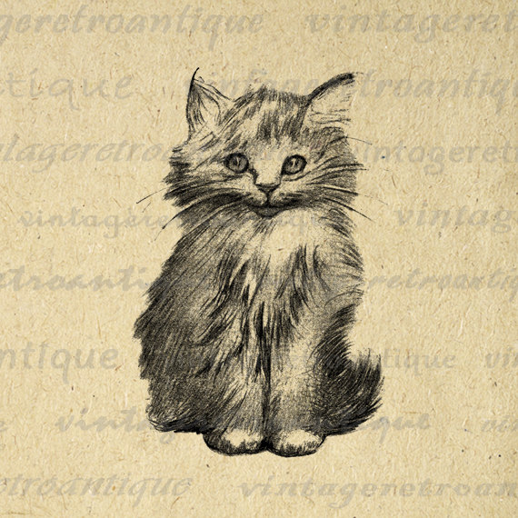 Printable Digital Cute Kitten Graphic Cat Image Illustration.