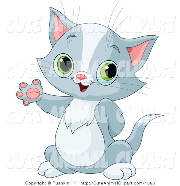 Clip Art Of A Grey And White Pet Tabby Cat Kitten With Large.