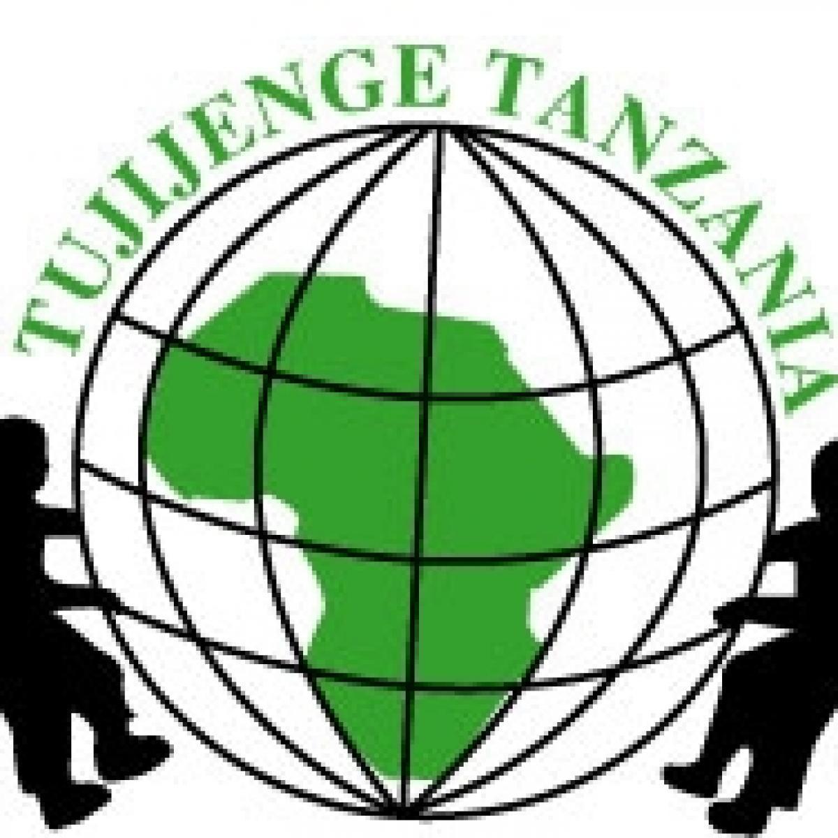 Kiva Lending Team: Friends of Tujijenge Tanzania.