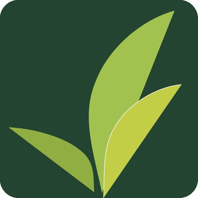 Kiva Lending Team: Centro Community.