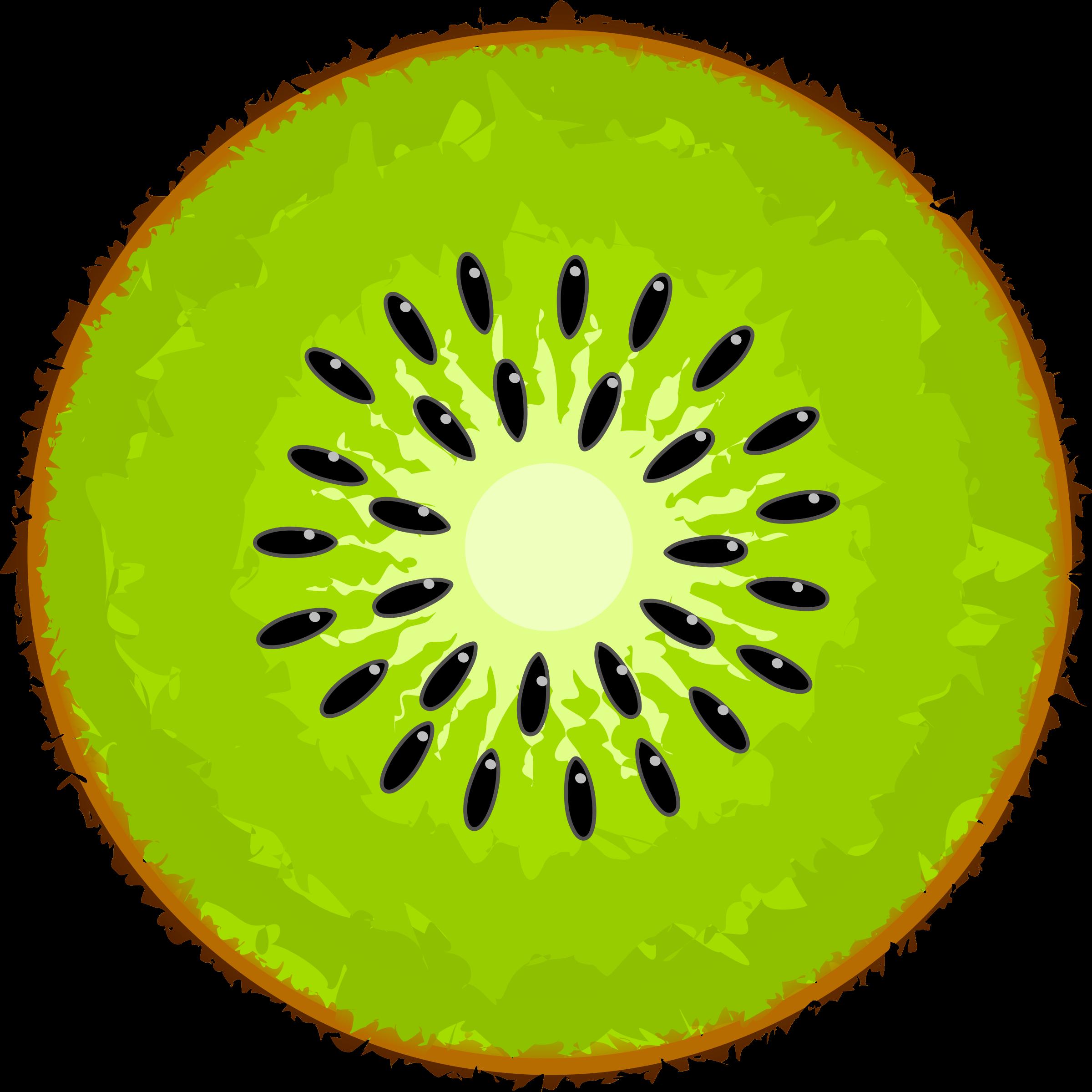 Kiwi Clipart.