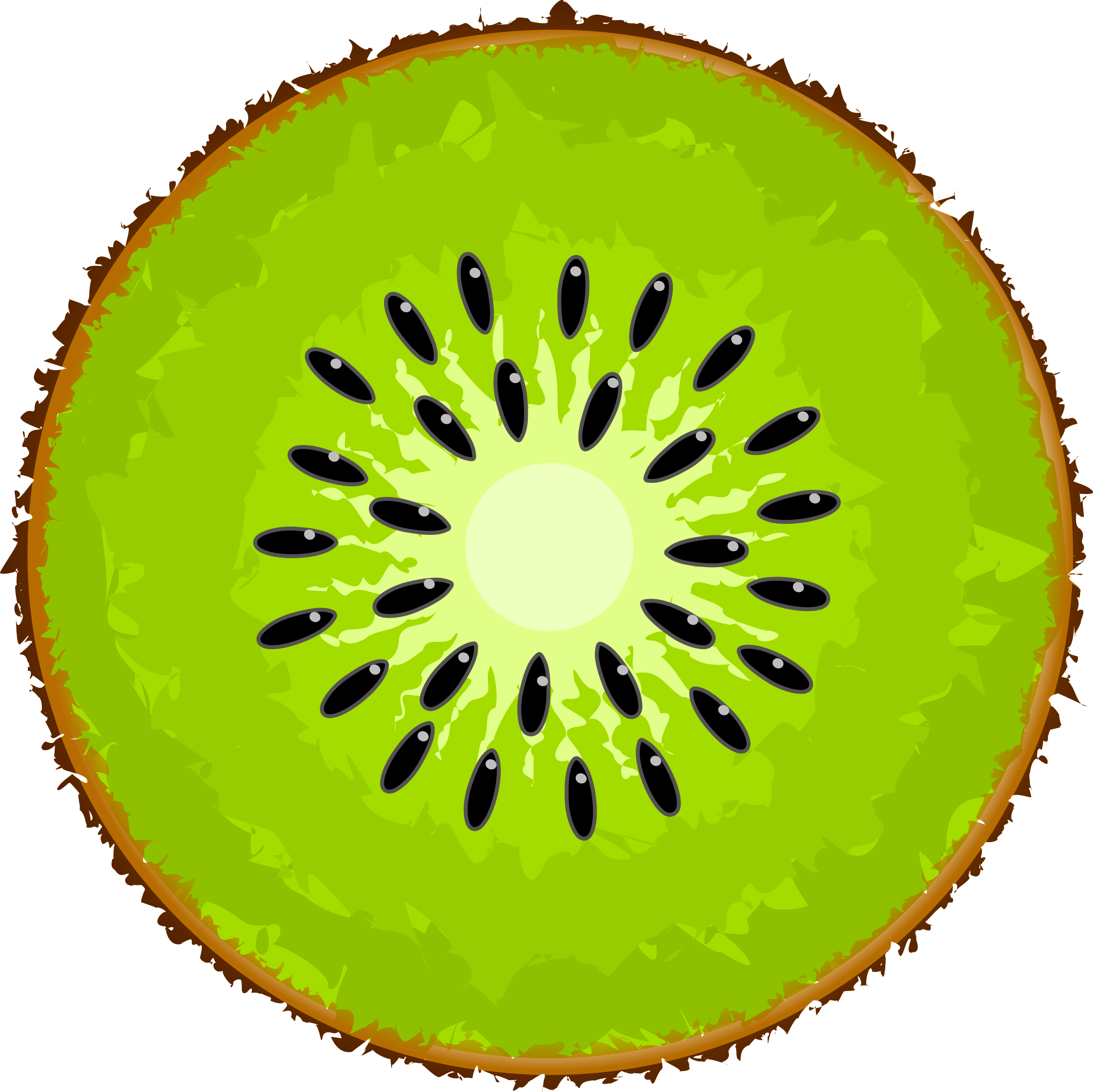 Free Kiwi Cliparts, Download Free Clip Art, Free Clip Art on.