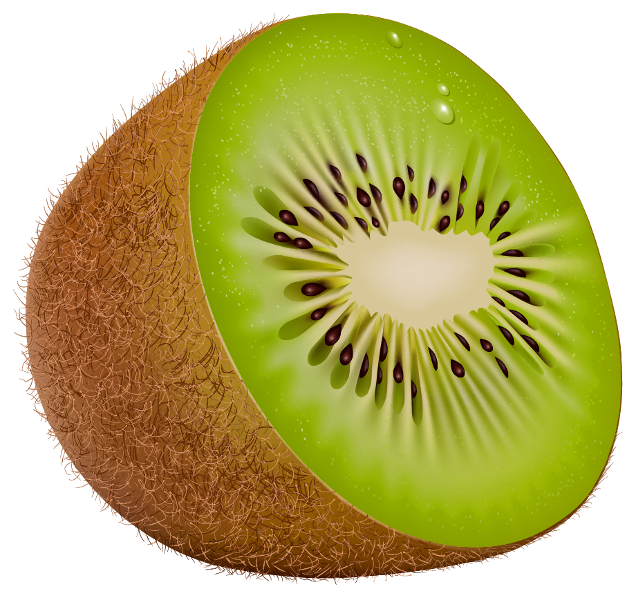 Kiwi PNG Image, Free Fruit Kiwi Clipart Pictures.