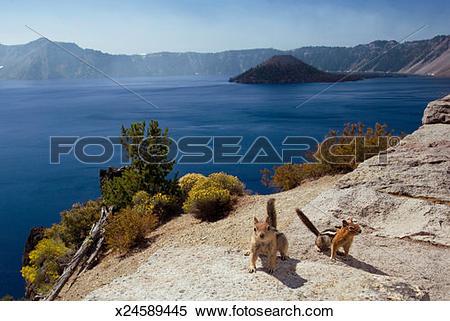 Stock Image of USA, Oregon, Klamath County, Crater Lake National.