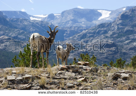 Wind River Mountains Stock Photos, Royalty.