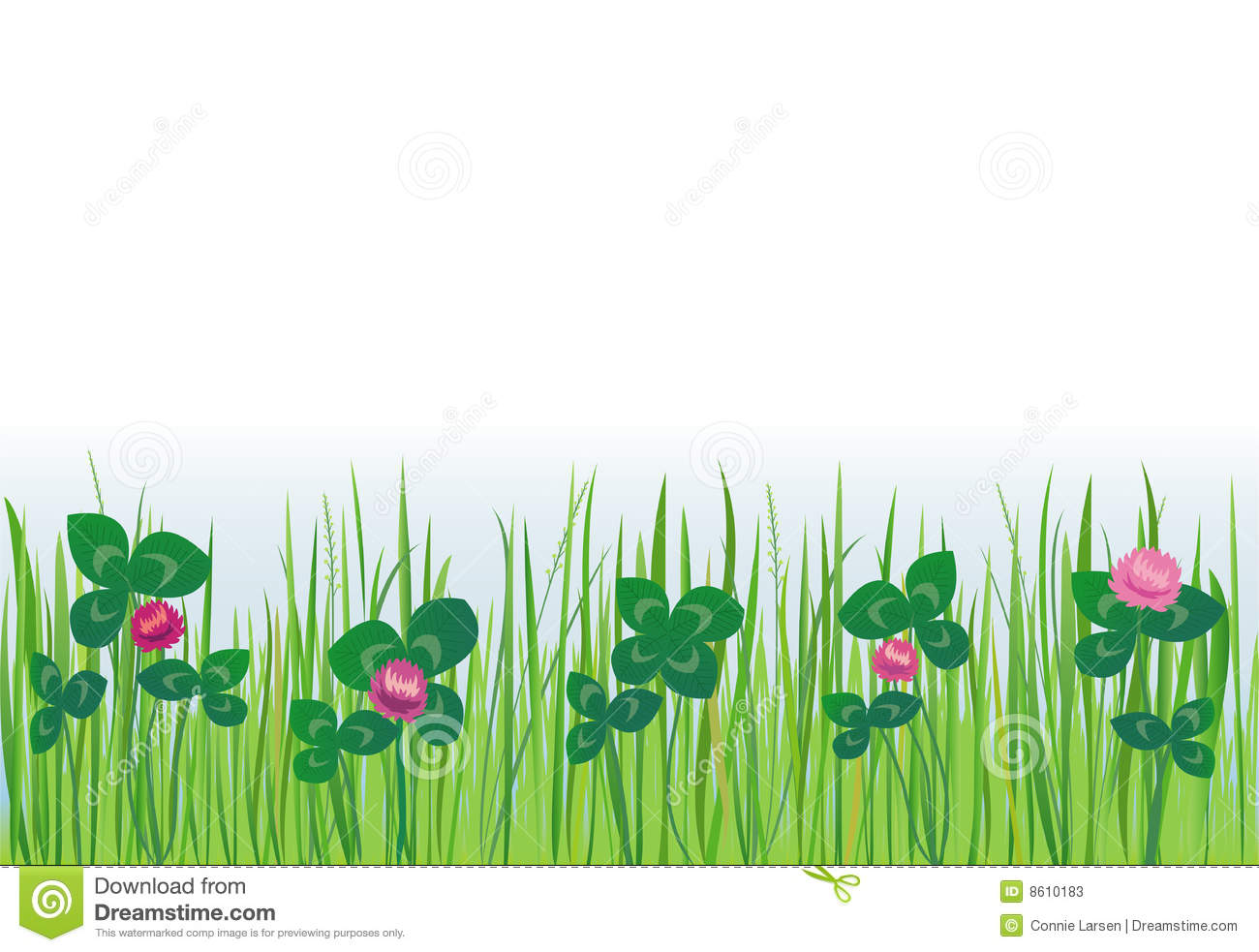 Grass Lawn With Clover Stock Photos.