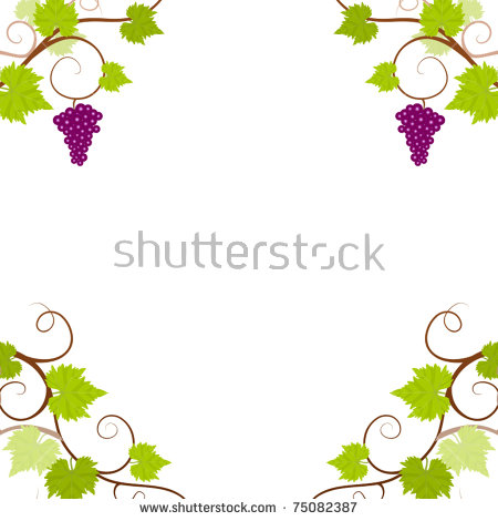 Fresh Grapevine Border Isolated On White Stock Foto 34256101.