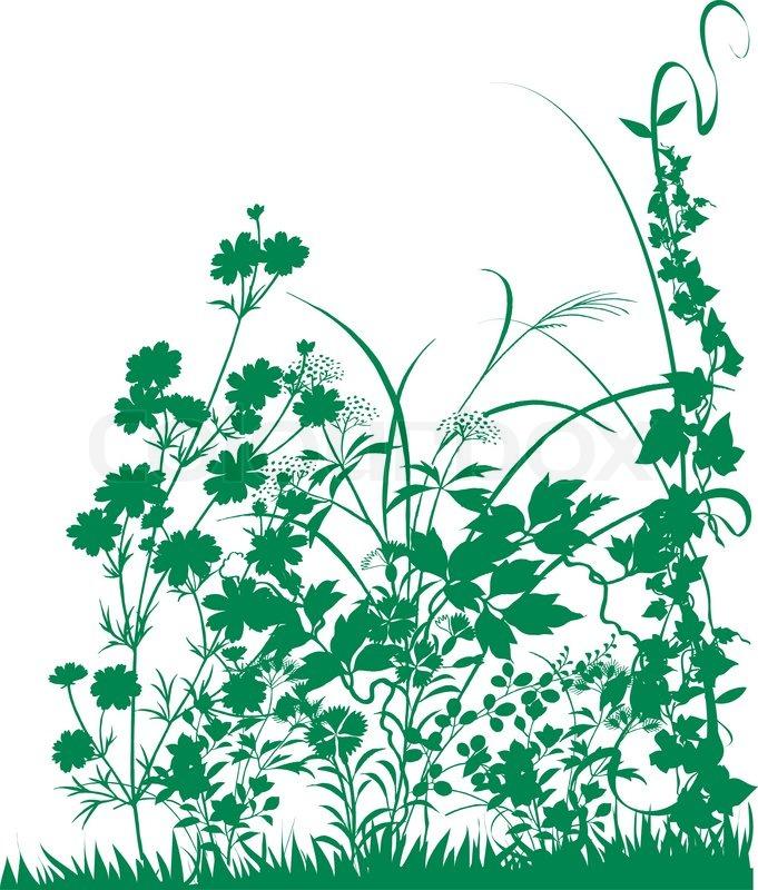 Pflanzen.