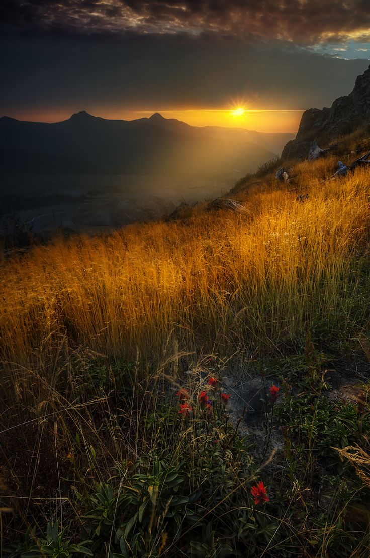 1000+ images about natural magnificence on Pinterest.