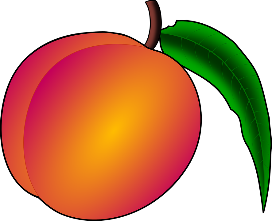 Free vector graphic: Peach, Fruit, Nectarine, Plant.