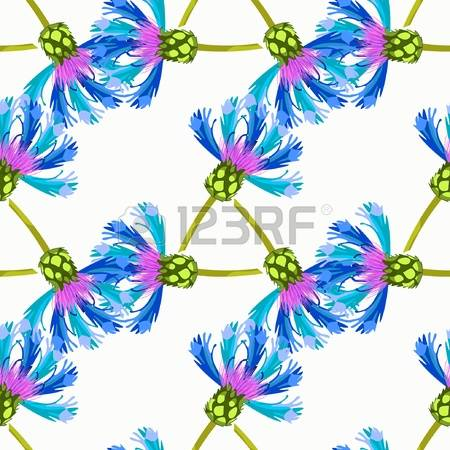 Knapweed Pattern Stock Illustrations, Cliparts And Royalty Free.