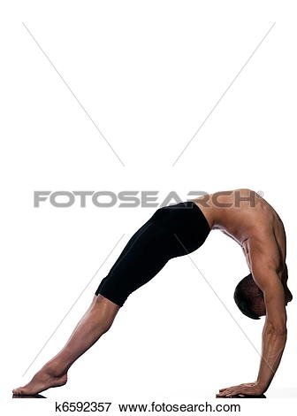 Picture of man sarvangasana setu bandha bridge pose yoga k6592357.