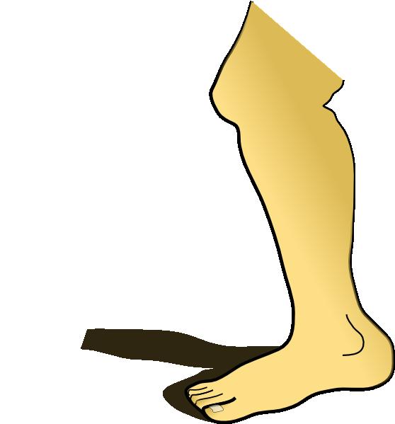 Knee Clipart.