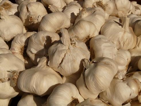 Vegetables garlic free stock photos download (1,109 Free stock.