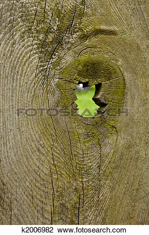 Stock Photo of Rustic Fence with Jagged Knothole k2006982.