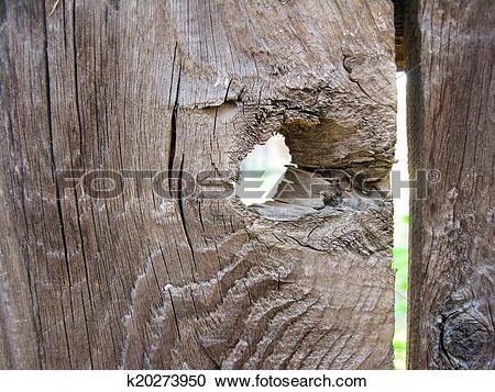 Stock Photography of Fence knothole k20273950.