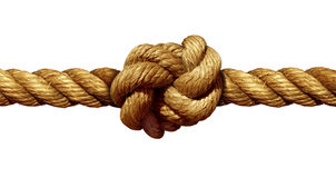 Rope Knot Stock Illustrations.