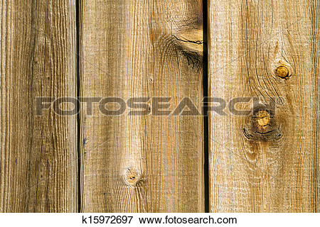 Picture of Knotty Wood Texture k15972697.