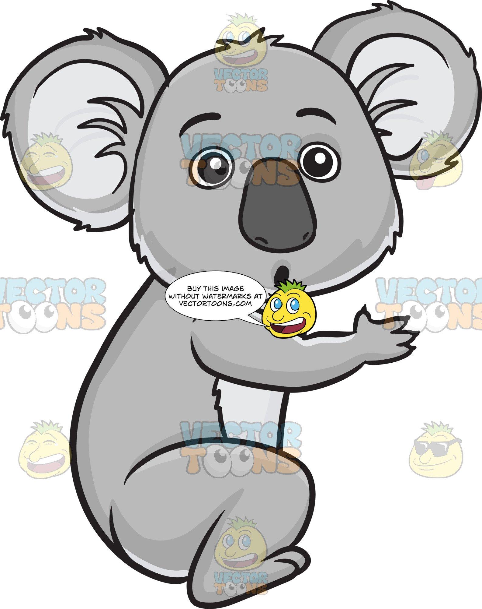 A surprised koala bear.